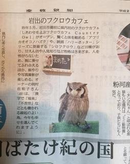 産経新聞2017元旦4.jpg